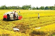 Quality human resources vital for Mekong economy