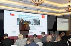 Vietnamese, Czech enterprises seek cooperation