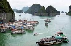 Quang Ninh bans construction of new tourist boats