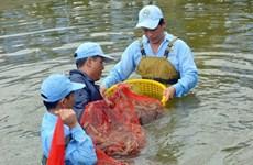 Mekong Delta makes livelihood adapt to climate change