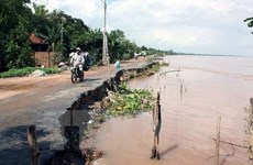 Mekong Delta asked to develop urban areas adaptive to climate change