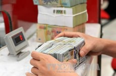 Vietnam's forex remains stable after FED's interest rate increase
