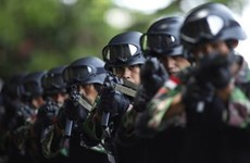 Indonesia: Police block New Year terror plot