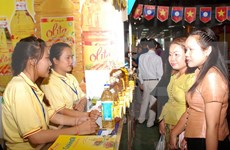 Vietnam-Lao Trade Fair 2015 opens in Laos