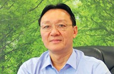 MoIT firms struggle to find strategic investors