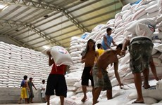 Philippines plans to import more rice from Vietnam, Thailand