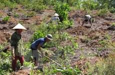 Thua Thien-Hue targets 16,000 new jobs this year