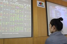 Plunging crude prices pull Vietnamese stocks down