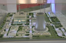 EVN, agencies to work together on power plants
