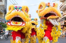 Soc Trang hosts first regional lion, dragon dance championship