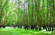 Mekong Delta holds beguiling charms
