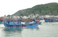 Bac Lieu: fishing boats head for the sea