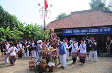 Praying for rain – special ritual of Cham ethnic minority