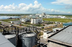 Hai Phong seeks to attract more investors