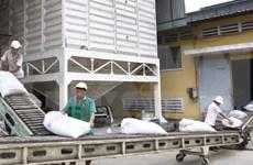 Workshop boosts rice export