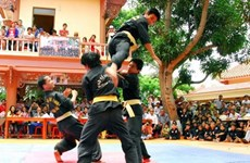 World Vietnamese martial arts in HCM City
