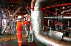 Vietnam, Russia foster cooperation in oil and gas