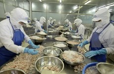 Vietnam's exports to Mexico rise fast