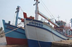 Soc Trang launches wood-hulled fishing boats built under Decree 67
