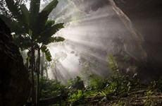 Son Doong Cave nominated for world record