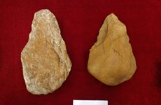 Signs of Paleolithic age found in Vietnam