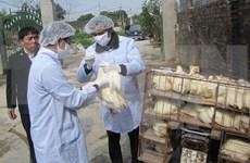 Localities warned of potential bird flu risks