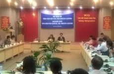 Vietnam makes good use of WTO chances: WTO head