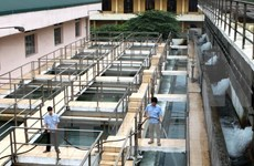 Hanoi may face summer water shortage