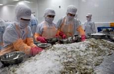 Vietnam's shrimp exports to UK rise sharply