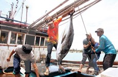 Vietnam, Thailand implement agreement on labour import-export