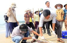 Mass fish death likely due to toxic contamination