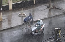 Downpour brings relief to drought-stricken Long An