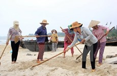 Deputy PM inspects damages from mass fish deaths in Quang Tri