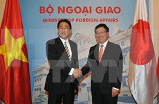 Vietnam, Japan agree to increase political trust