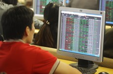 VN Index falls after previous rally