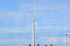 Renewable energy development needs support policy