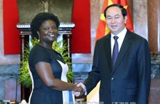 President urges WB to promote its coordination role