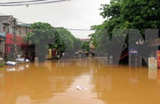 Heavy rains leave trails of destruction in northern localities