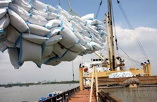 Rice exporters anticipate 400,000 tonnes in May