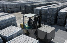 Unbaked brick production encouraged in Vietnam