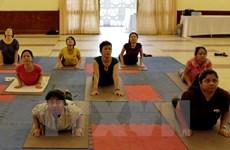 Da Nang programme responds to Int'l Yoga Day
