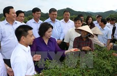 Lang Son required to better investment environment