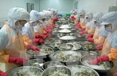 Vietnamese exporters learn about trade safeguards