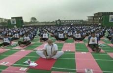 Vietnam Ambassador joins India's celebration of Int'l Yoga Day