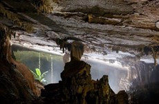 More caves discovered in Quang Binh