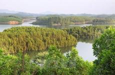 Foreign ambassadors tour Lam Dong province