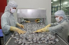 Vietnam reports 177 million USD trade deficit in May