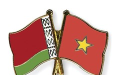 Vietnam, Belarus hold political consultation at deputy FM level