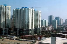 Property market recovering: forum