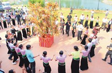 Xoe dance hoped to be intangible cultural heritage of humanity
